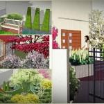 wizualizacje ogrodów