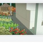 Przejście do ogrodu- nasadzenia bylin cienioznośnych.